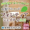 【ポイント最大16倍】美しいスラットで高遮蔽・高遮光・木製ブラインド(フォレティアシェイディタッチエコ) 幅100×高さ140cmまで