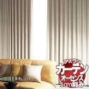 カーテン シェード アスワン オーセンス AUTHENSE E8249〜E8251 厚地+レース ハイグレード縫製 約2倍ヒダ 幅150×高さ200cmまで