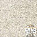 【壁紙 クロス 送料無料】サンゲツの壁紙!XSELECT エクセレクト SHITSURAHI 土 / 珪藻土 SGB2281 10m以上1m単位で販売