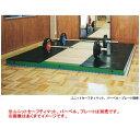 ニシスポーツ プラットフォーム T3246 (W)3000×(L)3000×(H)100mm