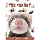 ショッピング卓上カレンダー 【メール便可】THE FERRET(フェレット) 2020年 卓上カレンダー[動物/ペット/calendar/令和/デスク]