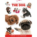 ショッピング卓上カレンダー 【メール便可】THE DOG 2020年 卓上カレンダー オールスター[犬/ドッグ/ペット/calendar/令和/デスク]