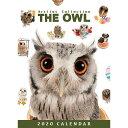 ショッピング卓上カレンダー 【メール便可】THE OWL(フクロウ) 2020年 卓上カレンダー2020年 卓上カレンダー[鳥/ペット/calendar/令和/デスク]