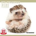 【送料無料】THE HEDGEHOG(ハリネズミ) 2020年 カレンダー[小動物/ペット/calendar/令和/壁掛け]