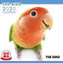 【送料無料】【あす楽】THE BIRD(鳥) 2020年 カレンダー[インコ/オウム/文鳥/calendar/令和/壁掛け]