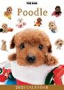 ショッピング卓上カレンダー 【メール便可】THE DOG 2021年 卓上カレンダー プードル[犬/ドッグ/ペット/calendar/令和/デスク]