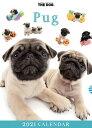 ショッピング卓上カレンダー 【メール便可】THE DOG 2021年 卓上カレンダー パグ[犬/ドッグ/ペット/calendar/令和/デスク]
