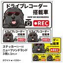 ショッピングドライブレコーダー グラサン ドライブレコーダー ステッカー ニューファンドランド 長方形 3枚入1セット 大15cm 小6.5cm シール 犬屋 オリジナル 犬 ドッグ ドラレコ