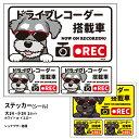 ショッピングドライブレコーダー グラサン ドライブレコーダー ステッカー シュナウザー 長方形 3枚入1セット 大15cm 小6.5cm シール 犬屋 オリジナル 犬 ドッグ ドラレコ