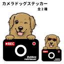ゴールデンレトリバー ステッカー カメラドッグ 犬 犬屋 いぬや ドライブレコーダー