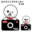 ショッピングドライブレコーダー ビションフリーゼ ステッカー カメラドッグ 犬 犬屋 いぬや ドライブレコーダー