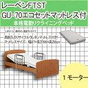 【送料無料】電動リクライニングベッド レーベンFTST 1MO(テスリ付) リサイクルウレタンマットレス付き 電動ベッド リクライニングベット 介護ベッド