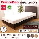フランスベッド 電動ベッド(GR-02F) 2モーターフレーム ワイヤレス マットレス付(RX-030)