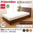 フランスベッド 電動ベッド(GR-03C 2モーターフレーム