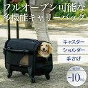機能とデザインを追求したキャリーバッグ