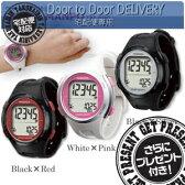 【当日出荷】【さらに選べるおまけ付き】【YAMASA ヤマサ 】【山佐時計計器】ウォッチ万歩計 DEMPA MANPO TM-500 - 電波時計内蔵・腕時計型万歩計