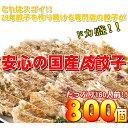 ショッピングぎょうざ 【ワケあり】安心の国産餃子800個!!160人前!! 送料無料!