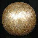 インテリアオーナメント/室内置物 【ボール型】 直径31.5cm ハンドメイド 陶器製 『貝殻 シェルボール』 〔什器〕 送料込!