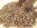 It is roasted after an order by a straight bean! Six kinds of roast methods are available!  Hawaii Kona fancy 100g13 % OFF sale fs2gm [10P17May13] which sends a genuine fragrance [point 10 times]