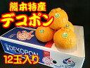 熊本県産 デコポン 12玉入 約5kg
