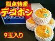 熊本県産 デコポン 9玉入 約2.5kg