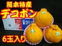 熊本県産 デコポン 6玉入 約2.5kg