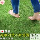 人工芝 防草 防草人工芝 芝丈2cm BP-2011 1m×1m アイリスオーヤマ