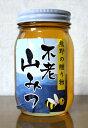 天然はちみつ和歌山 奥熊野山蜜 610g日本ミツバチ天然蜂蜜(ハチミツ)国産 日本産彩り屋_