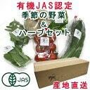 有機野菜と有機ハーブ季節の無農薬野菜と無農薬ハーブ有機JAS...