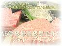 A5等級 最高級国産黒毛和牛 ヒレステーキ(100g)【RCP】