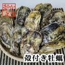 三重県産 殻付牡蠣 加熱用 冷凍 20個