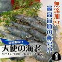 天使の海老 Mサイズ 生食用 30/40サイズ 1kg 冷凍[魚介類]