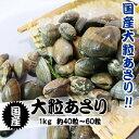 活あさり貝 国産 特大 1kg 約40粒〜60粒 [あさり貝...