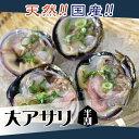 大アサリ(半割済) 1個 [魚介類]