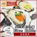 【送料無料】【生食用】【夏季限定】伊勢志摩産岩牡蠣15個(1個あたり300g〜350g)身入り厳選 牡蠣ナイフ・軍手付