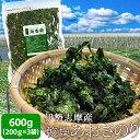 【クーポンで100円OFF】伊勢志摩産あおさのり600g(200g×3袋) 送料無料 海藻 アオサ
