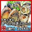 【送料無料】夏の選べる特選活貝3種詰合せ白あわび・さざえ・ムール貝・岩牡蠣・大アサリ・あっぱ貝の内お好みの3種類をお選びいただけます!
