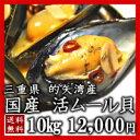 【送料無料】三重県伊勢志摩産天然活ムール貝10kgガーリックバターでワインとの相性ばっちり♪【RCP】