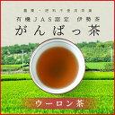 伊勢茶 有機ウーロン茶40g メール便送料無料 有機JAS認定 お茶 日本茶 三重県産 農薬・肥料不使用栽培