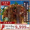 三重県産 伊勢海老詰合せ3尾(やや大きめサイズ)で約1kg ...