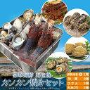 美し国豪華海鮮海宝焼 伊勢海老小1尾 鳥羽産牡蠣8個 さざえ2個 大あさり2個 送料無料