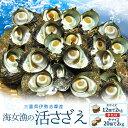 【送料無料】三重県伊勢志摩産海女漁の天然活さざえ2kgサザエのサイズと個数が選べます お中元