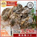 浦村牡蠣30個 殻付き牡蠣 (牡蠣ナイフ・片手用軍手付き)発...