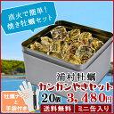 牡蠣 殻付き カンカン焼きセット20個入(2.5kg前後)鳥...
