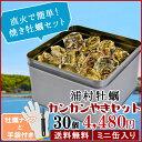 牡蠣 殻付き カンカン焼きセット30個入(4kg前後) ミニ缶入 送料無料 鳥羽浦村産(牡