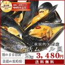 【送料無料】三重県伊勢志摩産 活ムール貝2kg ガーリックバターでワインとの相性ばっちり♪