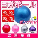 【送料無料】バランスボール フットポンプ付き 45cm 55...