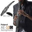 Roland ローランド / Aerophone AE-10G グラファイトブラック エアロフォン