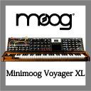 moog / Minimoog VOYGER XL☆お取り寄せ商品☆【名古屋栄店】【送料無料】
