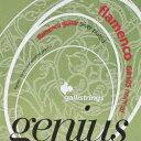 gallistrings / Genius Flamenco GR105 Normal Tension 29-44 【クラシックギター弦】【Classic Guitar Strings】【フラメンコギター弦】【ガットギター弦】【ナイロン弦】【Nylon】【セット弦】【ガリストリングス】【ジーニアスフラメンコ】【GR-105】【新宿店】